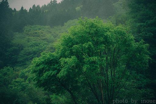 久々朝活写真1.jpg