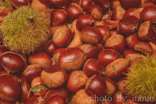 秋の味覚2.jpg