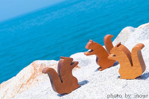 綺麗な愛媛の海とナッツ君2.jpg