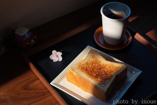 Happy Morning1.jpg