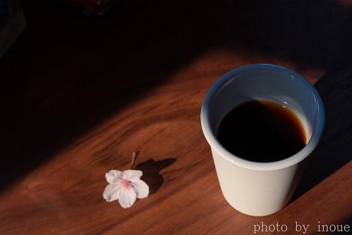 Happy Morning2.jpg